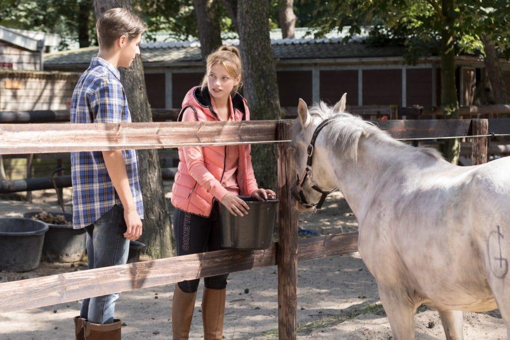 Whitestar: voor iedereen die van paarden houdt