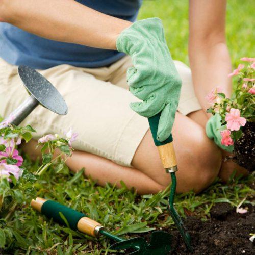 Inrichting van je tuin: 4 tips