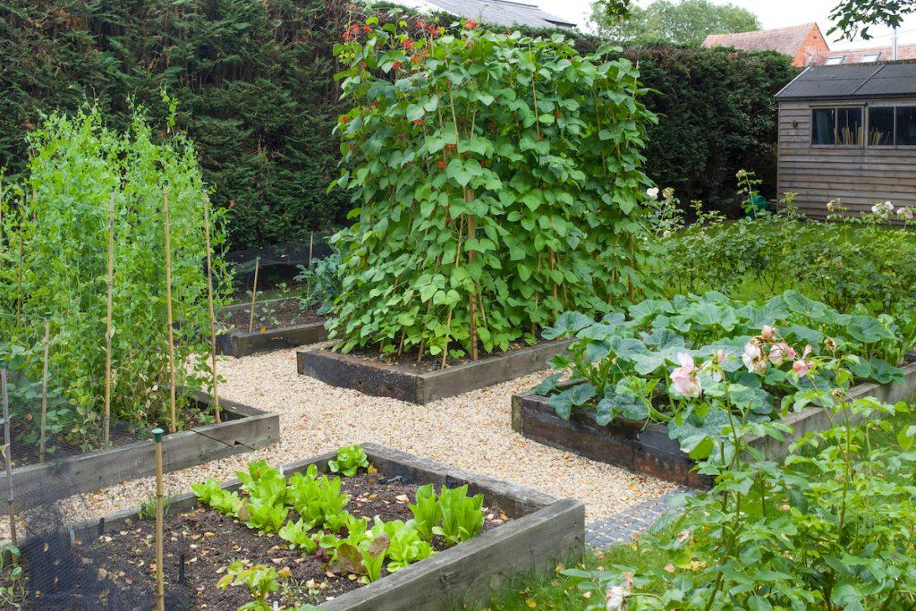 inrichting van je tuin